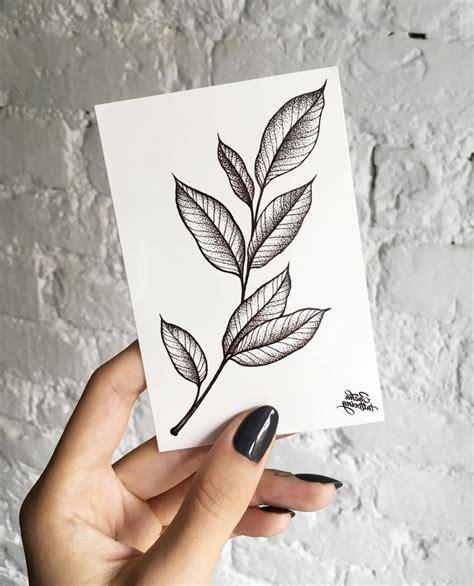 drawn leaves small leaf pencil   color drawn leaves