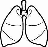 Lungs Coloring Pulmon Dibujo Un Nicepng Transparent sketch template