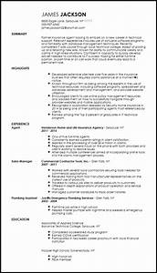 Technical Skills Cv Examples Entry Level Technical Support Specialist Resume Resume Now
