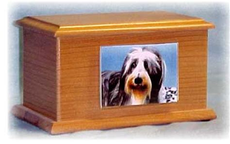 pine castle pet cremation service orlando fl  ypcom