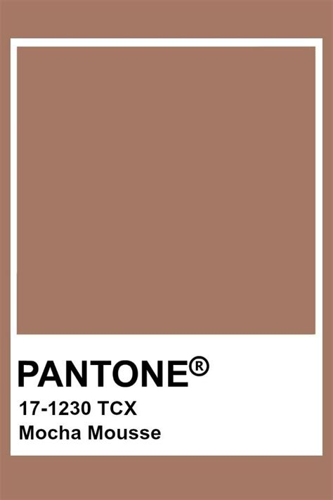 pantone mocha mousse pantone in 2019 beige color