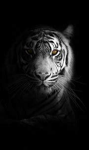 750x1334 Big Cat Tiger 4k iPhone 6, iPhone 6S, iPhone 7 HD ...