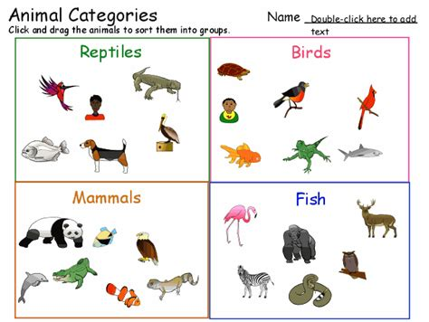 animal categories Animal Classification Template