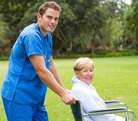 gender similarities  differences  caregivers role