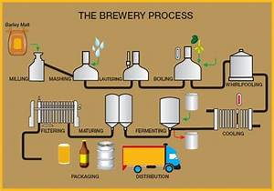 Pin By The Beer Brewing Book On How Beer Is Made