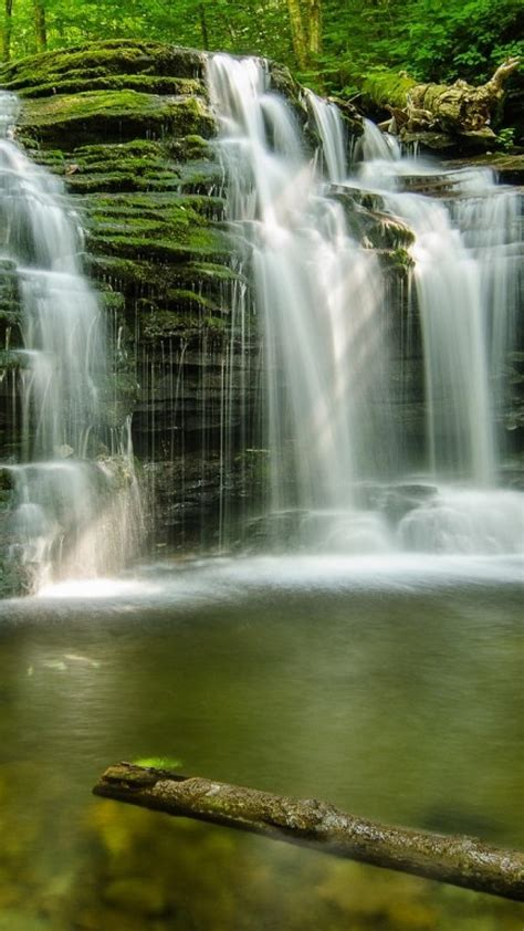 green forest waterfalls wallpaper