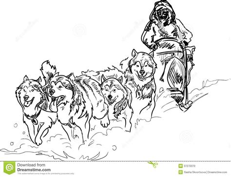 sled dog coloring pages stock photo alaskan sled dogs print outs basteln