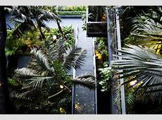 Interior Landscape Design DISD Interior Design Blog