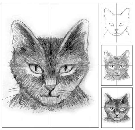 cat head shading animal art inspiration digital media