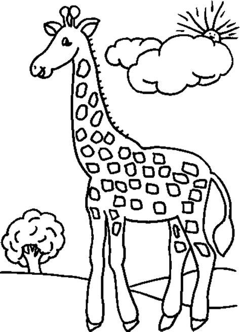 jirafa para colorear dibujos para ni 209 os para imprimir