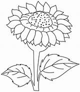 Coloring Sunrise Pages Sunflower Printable Getcolorings Sun sketch template