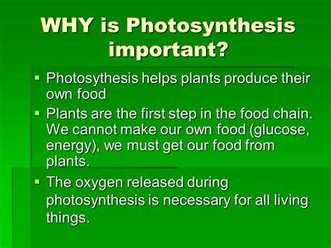 Photosynthesis And Respiration  Ppt Video Online Download. Living Room Christmas Curtains. 3d Wallpaper For Living Room For Sale. Living Room Brawl Game. Living Room Tables With Baskets. Living Room Decorating Ideas For Small House. How To Decorate A Living Room With Beige Walls. Living Room In El Cajon. Apartment Living Room Gallery