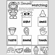 5 Senses  Planning Playtime