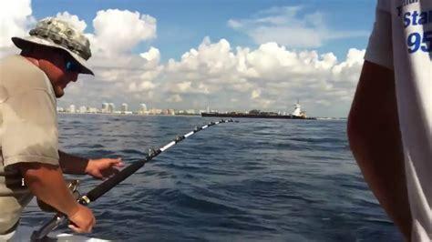 grouper fish goliath pier caught pound naples fishing
