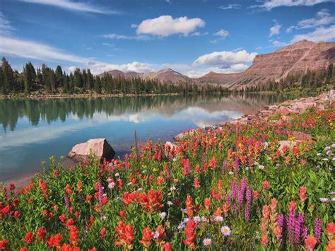 Scow Lake Uintas by Trip Report High Uintas Slope Trip