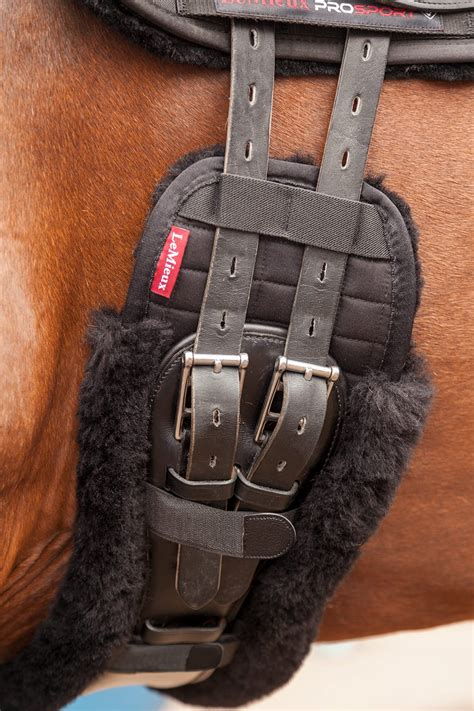 girth dressage equine heritage
