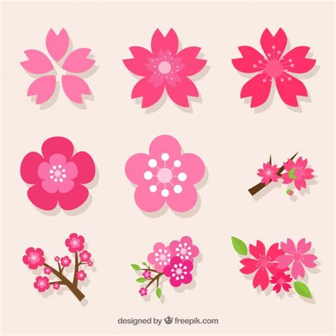 foto de Embalagem decorativa da variedade de flores de cerejeira
