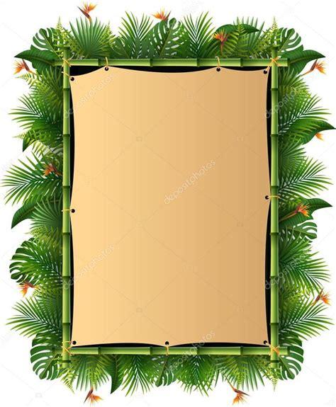 foto de Resultado de imagem para fundo floresta tropical vetor