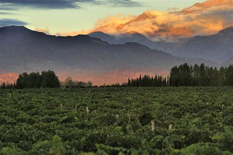 Argentina - Food and Land Use Coalition