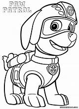 Patrol Paw Zuma Coloring Pages Colouring Rocky Drawing Printable Sheets Getcolorings Colorings Kit Popular Pdf Template Searches Recent sketch template