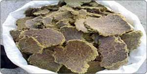 Cotton Seed Oil Cake – Cotton Seed Oil Cake Exporter ...