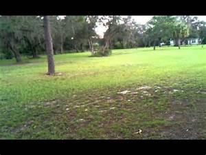 Posible slender man sighting in Florida - YouTube