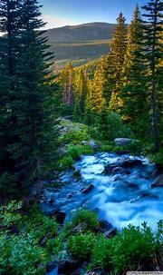 Nature Phone Wallpapers - Top Free Nature Phone ...