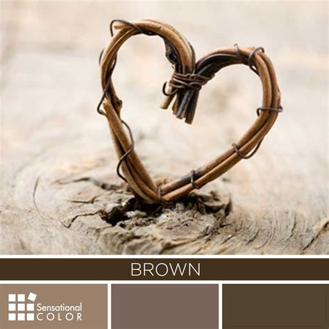 meaning of the color brown brown color palette sensational color