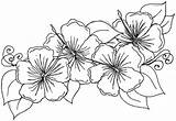 Coloring Hibiscus Flower Printable sketch template