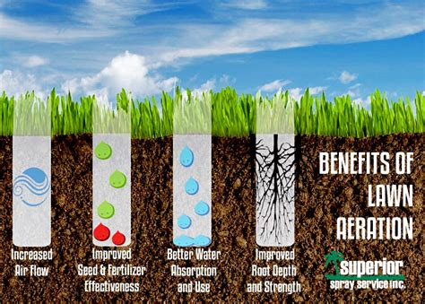 benefits of aeration aeration is the grass greener on the other side superior spraysuperior spray