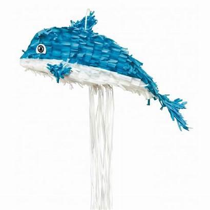 Dauphin Pinata Anniversaire Bleu Delfino Blu Pignatta