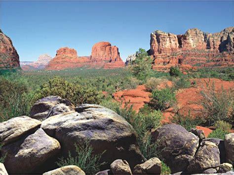 Desert Terrarium Background Background Wedding Pics Background Reptile Terrarium