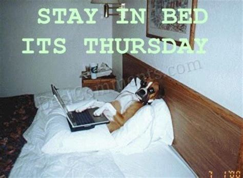 stay  bed  thursday desicommentscom