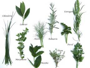 Herbes Aromatiques Pour Cuisine herbes aromatiques produits cuisine fran 231 aise