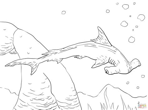 realistic shark coloring pages  getcoloringscom