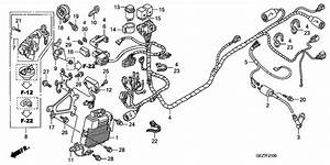 gy6 ruckus wiring diagram gy6 free engine image for user With honda ruckus stator