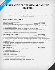 insurance professional resume sample insurance With life insurance resume format