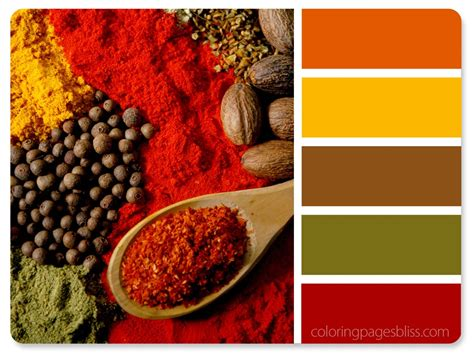 spice color nature inspired color palettes