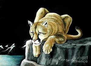 Mountain Lion Painting by DiDi Higginbotham