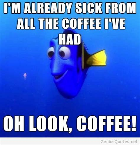 Funny Coffee Memes - best 25 hump day humor ideas on pinterest hump day pictures funny hump day pictures and