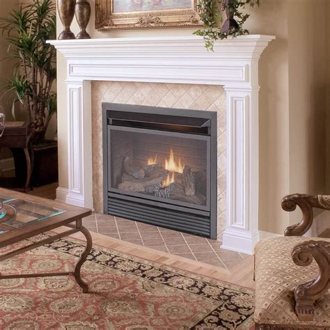 Interior Indoor Plant And Ventless Gas Fireplace Insert