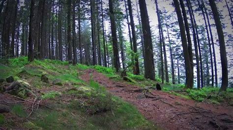 Westweg  An Adventure In The Black Forest, Westweg