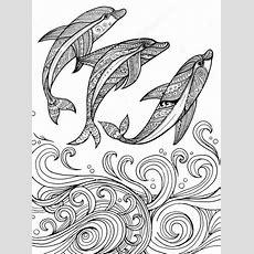 Threezentangledolphincoloringpages  Artcoloring Pages & Designs  Dolphin Coloring Pages