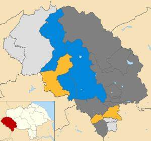Craven District Council election, 2006