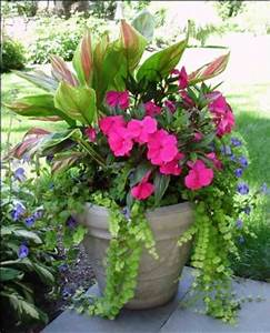 Shades container garden and front porches on pinterest for Porch plants that are part sun and part shade