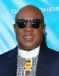 Stevie Wonder bringing Song Party show to Ireland as ...
