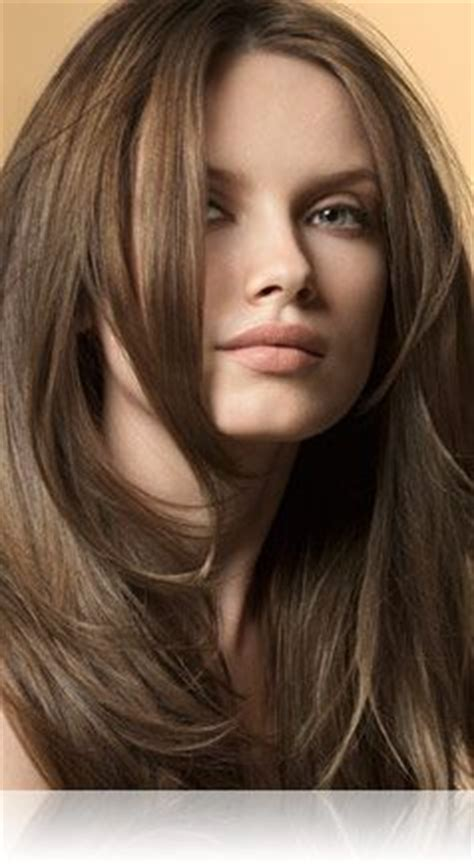 light ash brown hair color john frieda my hair brown colors and brown hair on pinterest