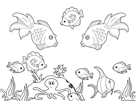 fish coloring pages for preschool preschool and kindergarten 854 | free animals printable coloring pages for preschool 7