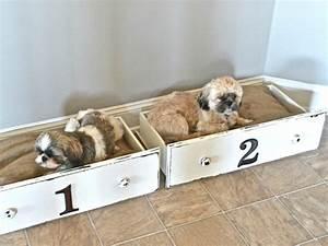 Couffin Pour Chien : 1001 id es 41 id es et un tuto pour fabriquer un panier pour chien ~ Melissatoandfro.com Idées de Décoration