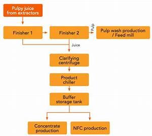 Process Flow Diagram Orange Juice